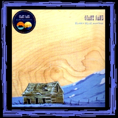 """Blurry Blue Mountaint"" - Fire Picture Disc LP"